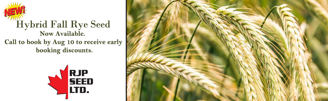 Hybrid Fall Rye Seed Now Available